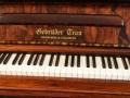 Trau Piano Detail