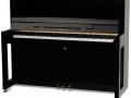 Farbe: Schwarz Messing; Preis: 3.990.- €